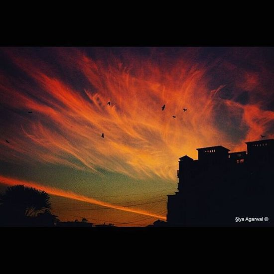 Viewslikethese Sunset Sunsetdiaries Skies Cloudporn Silhouette Throughthewindow Igersnavimumbai Phodus_competition Itz_mumbai _soimumbai _soi Soiwalks Mumbai_uncensored Ig_india Indianphotography Indianphotographyclub Desi_dairies Storiesofindia Canon EOS700D Pixelpanda_india Photographers_crews Canon_photos Pw_mumbai pw_featured somumbai myhallaphoto inspirioindia iiframe @instagram