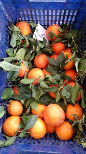 Al mercato di Manfredonia Sud Frutta E Verdura Arancia Orange