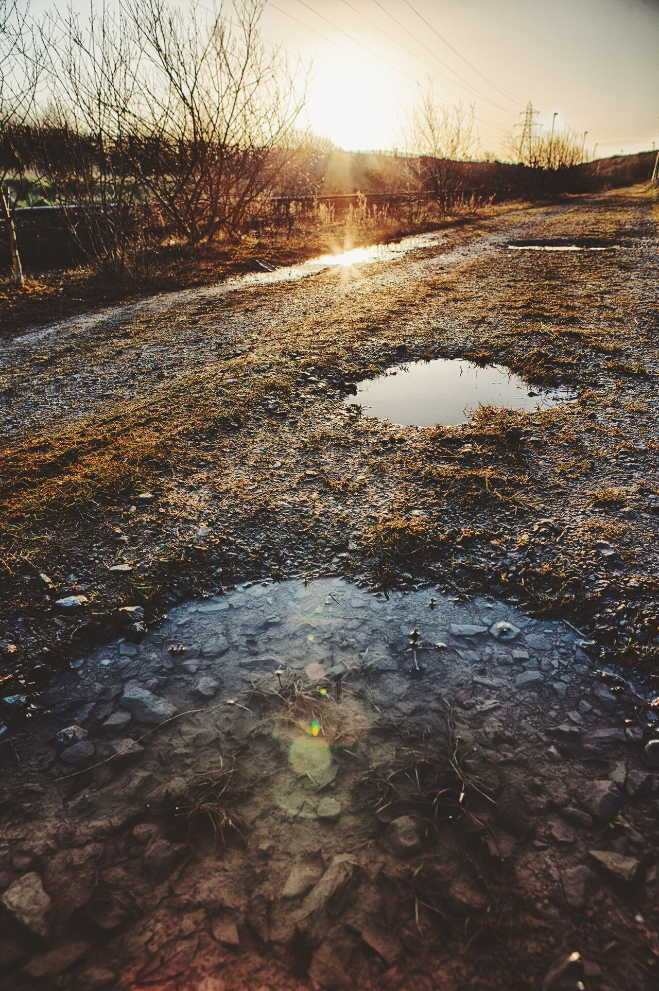 Countryside landscape with puddles at sunset
