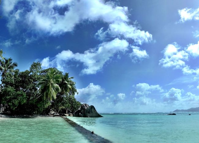 Sea Sky Beauty In Nature Scenics Nature Water Tree Tranquil Scene Tranquility Cloud - Sky Beach Horizon Over Water No People Day Blue Outdoors Shotoniphone7 Amazing Place Anse Source D'argent Seychelles La Digue Beachphotography Best Beach In The World Beauty In Nature
