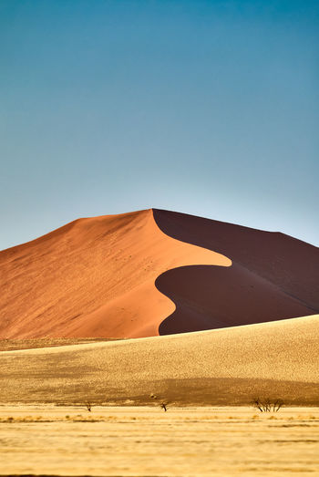 Sinuous sweeps the dune lines. Namibia Sand Dune Sky Desert Sand Arid Climate Landscape Clear Sky Climate Nature Scenics - Nature Environment Tranquil Scene Land Tranquility Blue Sunlight No People Day Non-urban Scene Outdoors Atmospheric Sossusvlei Sinuous Orange Color