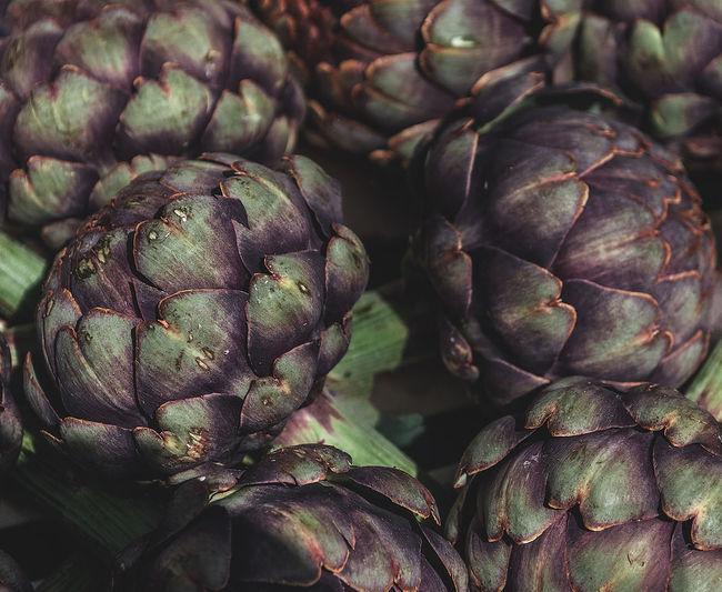 Full frame shot of purple and green artichokes