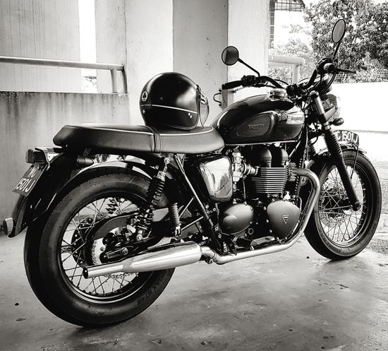 my love... Triumph Motorcycle Modern Classic Triumph Bonneville T100 Motorcycle Mode Of Transport Land Vehicle First Eyeem Photo