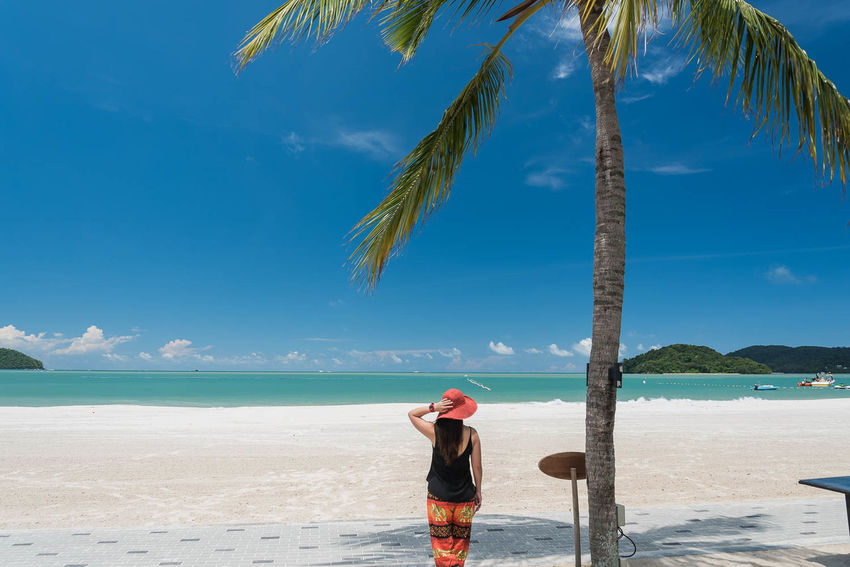 Girl enjoy the view of beautiful beach and sea. Adult Adults Only Beach Beauty In Nature Blue Day Holidays Leisure Activity Nature One Person One Woman Only Only Women Outdoors Palm Tree People Sand Scenics Sea Sky Standing Sunlight Tranquil Scene Travel Destinations Vacations Water Miles Away