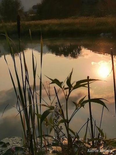 Wasser Sonne