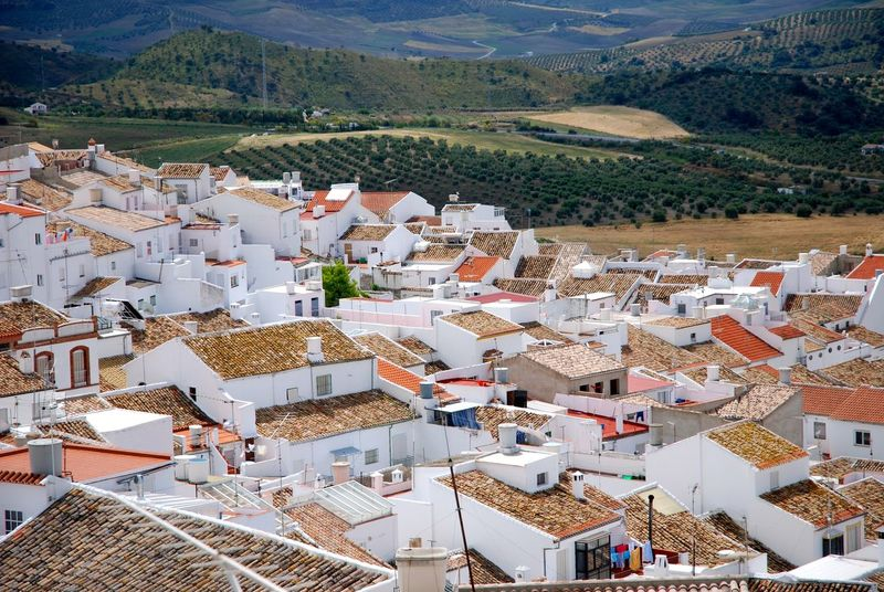 Rooftop and Red Tiles. Architecture Building Exterior Built Structure Community Day High Angle View House Mountain Nature No People Outdoors Roof Tiled Roof  Town