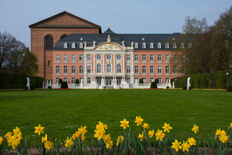 Architecture Building Exterior Built Structure City Day Façade Flower Grass Historical Building Kurfürstliches Palais Outdoors Palace