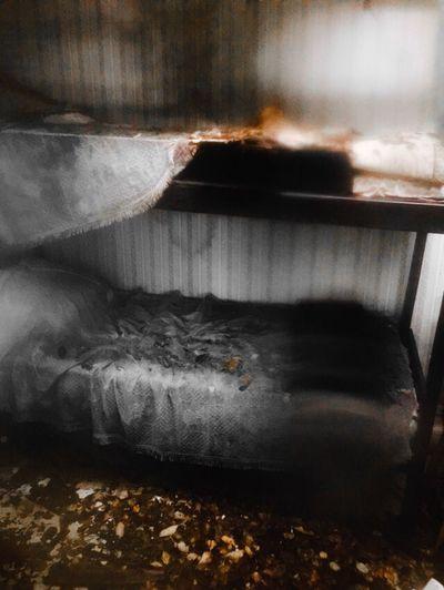 Abandoned Places Cabin Stuga övergivet
