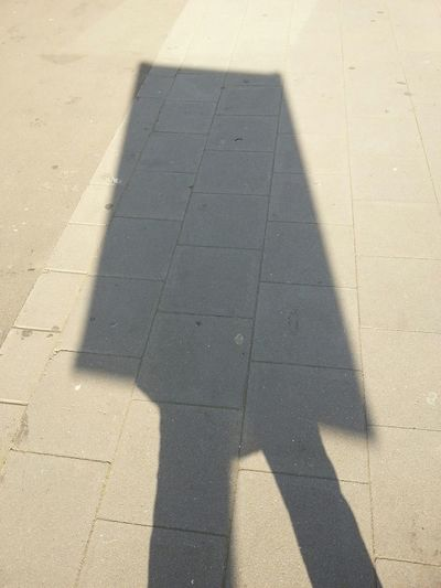 Guess What! Shadow Funny Stuff