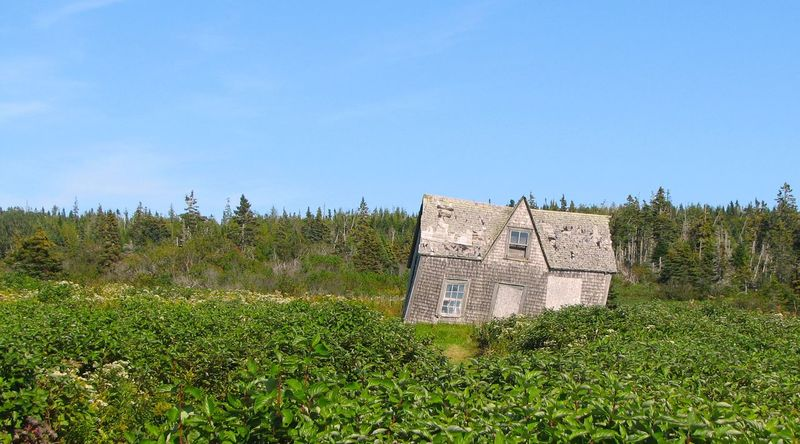 A house. Ancient Civilization Built Structure History Lopsided No Edit/no Filter No People Ouais Perce Quebec Residential Structure Rickety Wobbly Wonky Île Bonaventure Showing Imperfection The Traveler - 2018 EyeEm Awards The Architect - 2018 EyeEm Awards