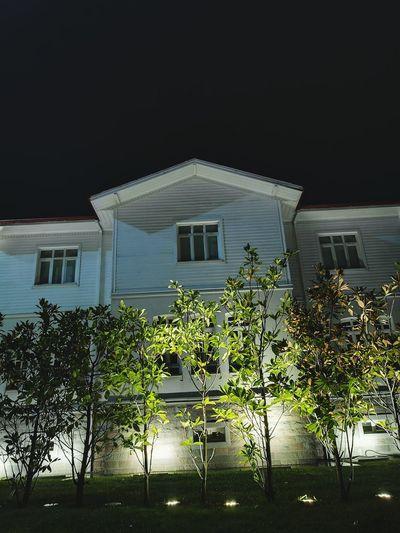 Social Issues House Architecture Tree No People Plant Residential Building Outdoors Night Yalova Turkey Nightlife Yalovasahili Nightphotography City Tree
