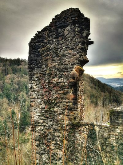 what a beautiful view Ruins Sun Wieladingen Forest Hill Mountain Hello World EyeEm Best Shots Taking Photos Huawei Photography Beauty In Nature Castle Germany Outdoors Protection Field Nature Sky Growth Cloud - Sky No People Sunset Day