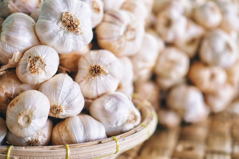 Close up garlic in a market and detail of some fresh garlic, copy space design your text.