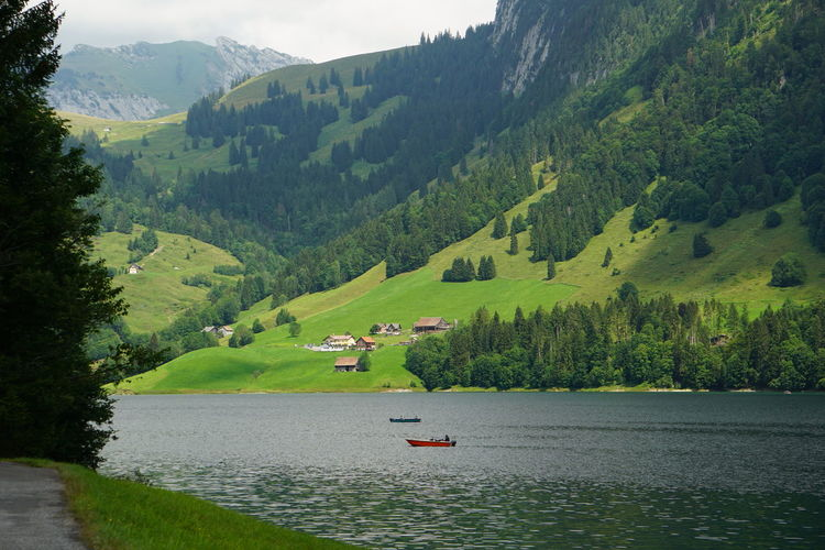 Scenic view of lake by mountains