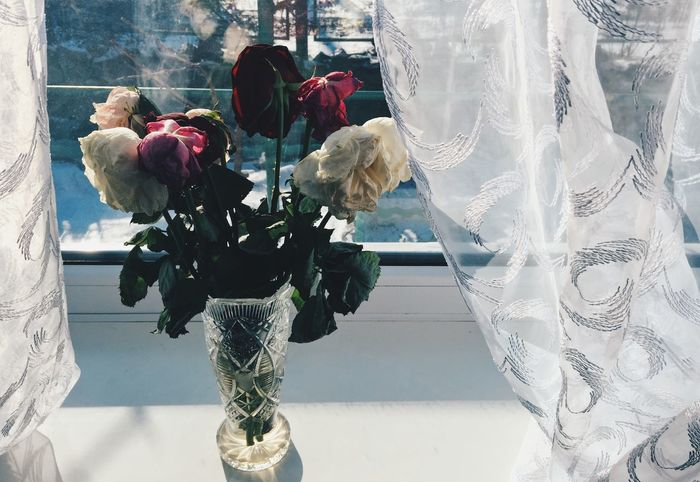 Bouquet of fading roses is standing in a crystal vase near the window Beautiful Beauty Bouquet Cernuous Colorful Crystal Crystal Clear Curtain Fading Fading Beauty Flower Flower Head Glass Herbarium Nature Roses Rotting Shadow Standing Vase Window