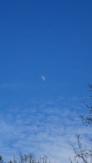 Moon Nature Nature Blue Sky Lune Moon Beauty In Nature