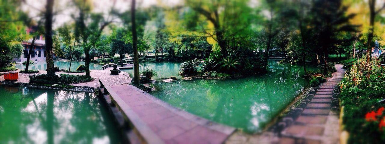 成都 Traveling Garden