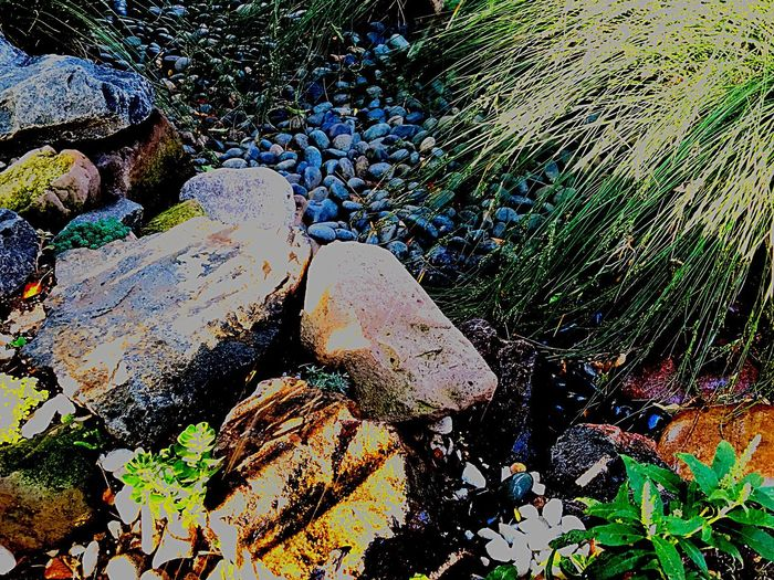 Day High Angle View Outdoors No People Rock - Object Nature Water Close-up Beauty In Nature Rocks Pebbles Pebble Garden Photography Nature Sunlight Rock Photography Green Color