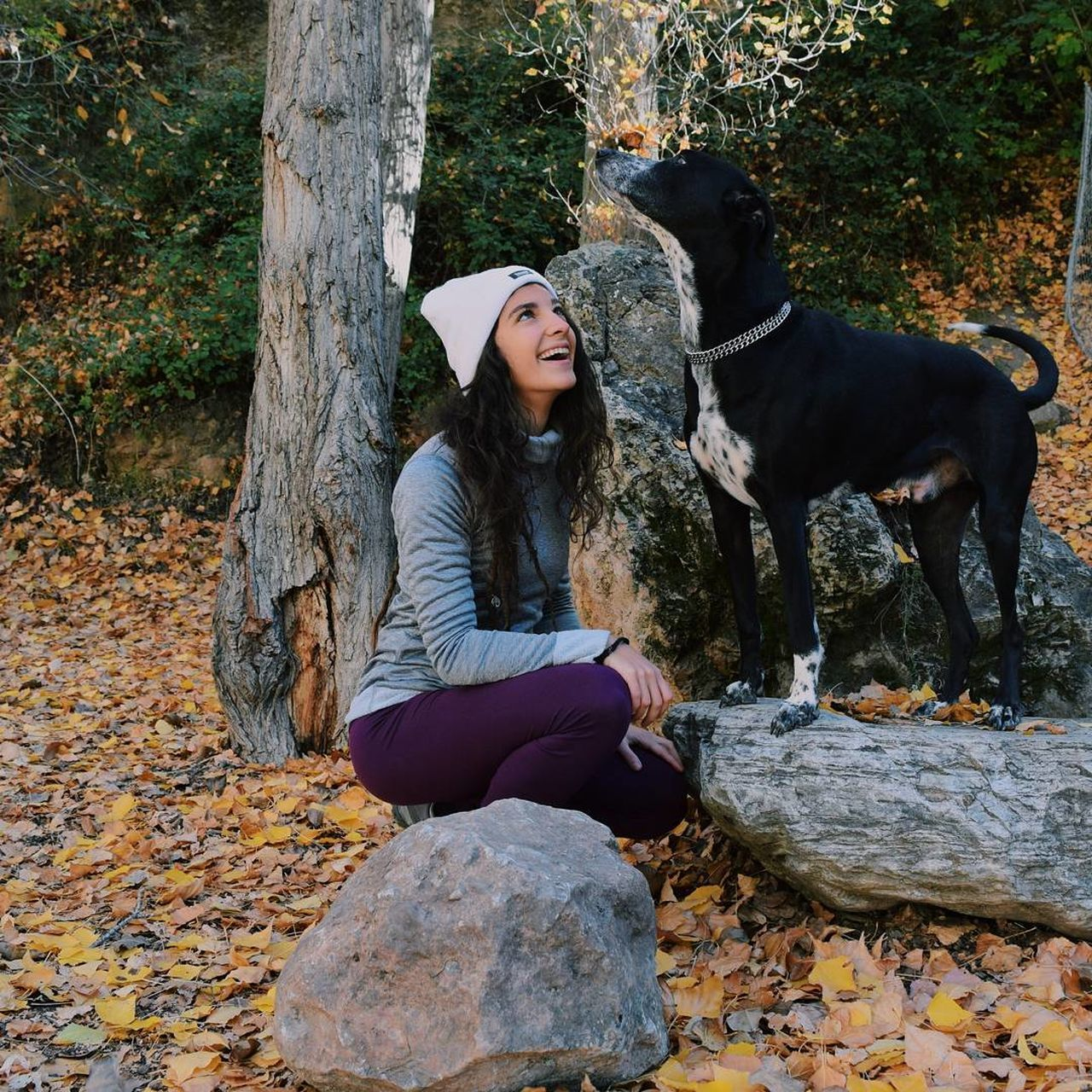 real people, leisure activity, full length, tree, one person, tree trunk, day, casual clothing, young women, lifestyles, front view, outdoors, sitting, young adult, one animal, dog, animal themes, nature, mammal, pets, domestic animals