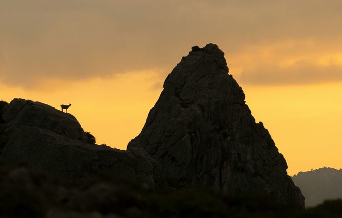 Camino de Cala Boquer Pollença (Mallorca) SerraDeTramuntana Eyeem Mallorca EyeEm Gallery Eyeemspain Nature Photography Naturaleza Crepusculo Serra De Tramuntana Enjoying The Sunset Nature Patrimonio Unesco