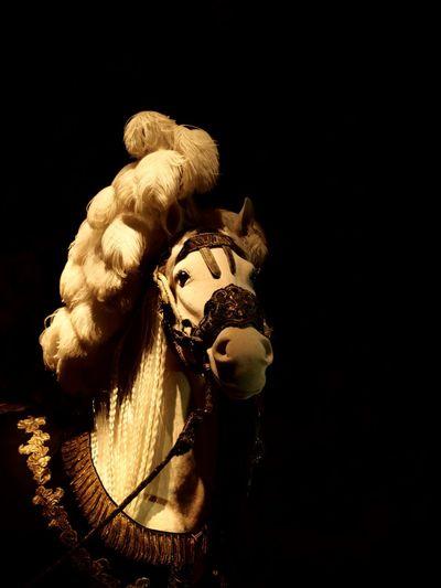 Horse, the museum have such beautiful light settings. Livrustkammaren Gamla Stan Gamlastan Stuffed Animals History Museum  History Swedish History Stockholm, Sweden Shallow Depth Of Field Bokeh Love Bokeh Photography Bokeh Horses Horse Horse Photography