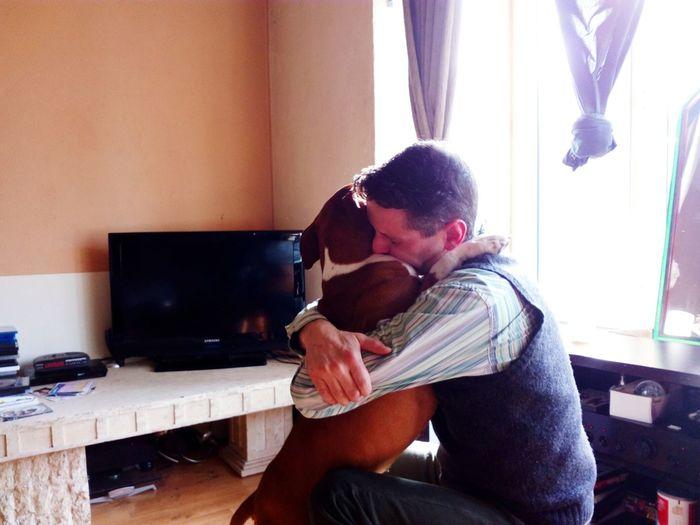 My Babys My Boyfriend ❤ Am Staff Kudli😍 Oostende, Belgium Love Them
