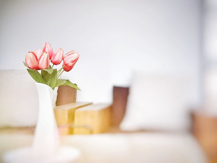 Plastic tulip in vase on table in room Flower Freshness Sweet Tulip Room Decoration Soft Focus On Foreground Beautiful Vase Light