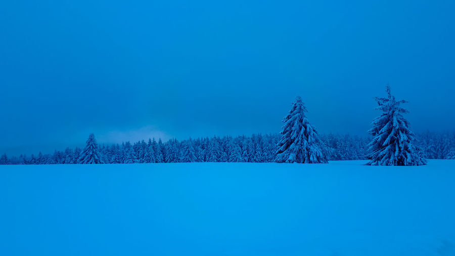 Silence - Blue hour, snow and firs Winter Wonderland Snow Covered Zen Nature_collection Nature_perfection Nature_collection Landscape_collection EyeEmNatureLover Woods Forest Photography Forest Trees Blue Hour Blue Hour Landscape Bluehour Silence Of Nature Silence Tree Frozen Water Spruce Tree Snow Snowflake Cold Temperature Bare Tree Winter Clear Sky Forest Fir Tree Pine Woodland Deep Snow Powder Snow Pine Tree