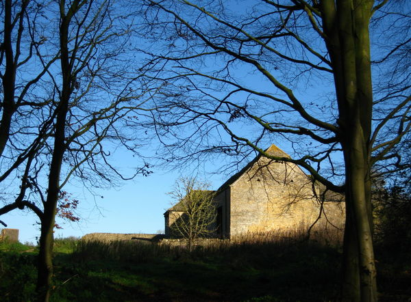 Old Barn near the Woods Architecture Bare Tree Blue Blue Sky Built Structure Cotswold Stone Day Disused Building Grass Growth Landscape Nature No People Old Outdoors Rural Scene Sky Stone The Cotswolds Tranquil Scene Tranquility Tree Tree Trunk Winter Woods