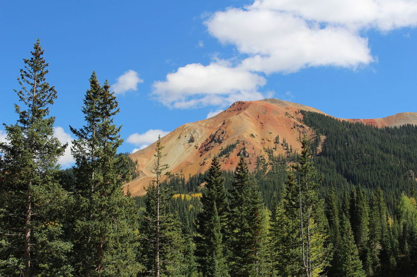 Red Mountain in Colorado Colorado Red Mountain Beauty In Nature Cloud - Sky Day Forest Growth Landscape Mountain Nature No People Outdoors Scenics Sky Tranquil Scene Tranquility Tree