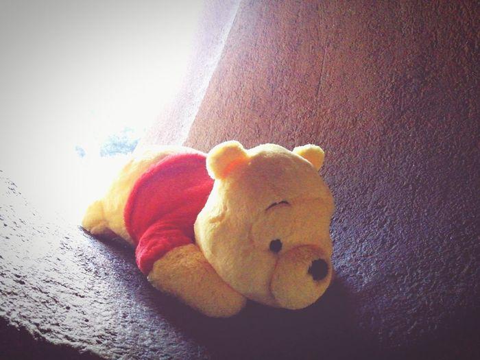 02282016 ディズニーランド ぷーさん ぬいぐるみ ハチミツ食べたい Pooh 抜け穴からHello