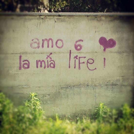 Amo sei la mia LIFE!!