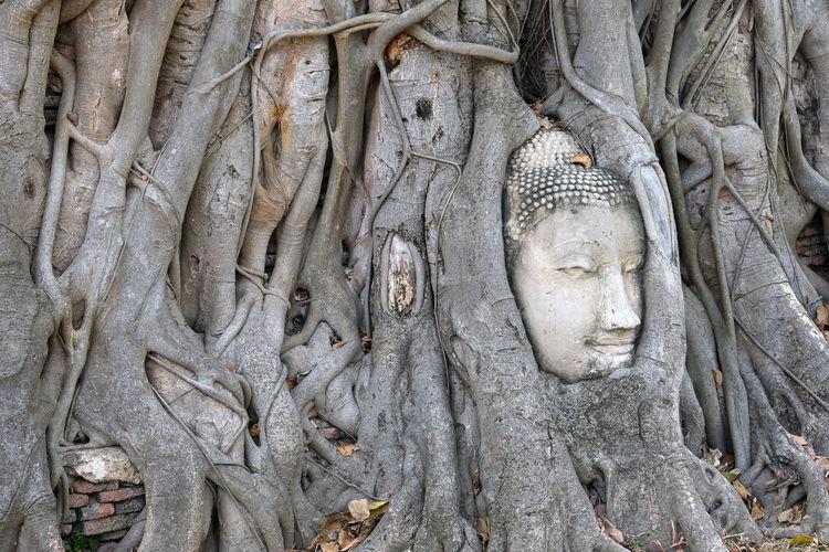 Sculpture of buddha statue