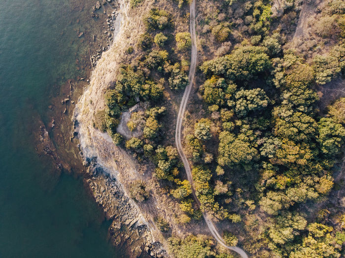 Birds eye view of a coastline with trees and a path way