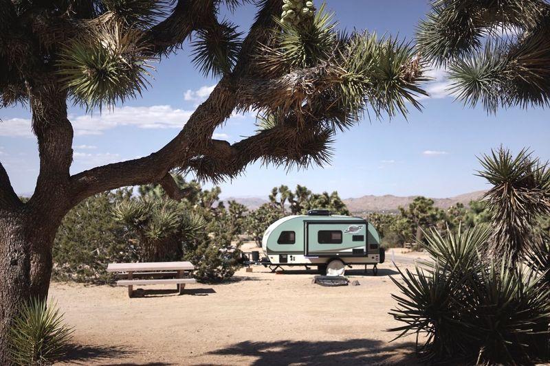 Caravan On Field Against Trees