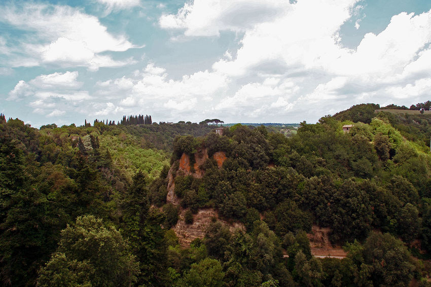 Etruscan landscape Etruria Canal Hills Italia Rock Formation White Clouds Beauty In Nature Clouds Clouds And Sky Day Etruria Forest Landscape Lazio Nature Outdoors Scenics Sky Tree Tuff Via Amerina White Clouds And Blue Sky
