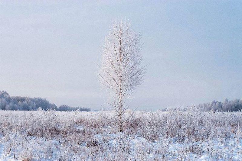 Зима все же уходит... пейзаж Landscape Клин Русино фото зима