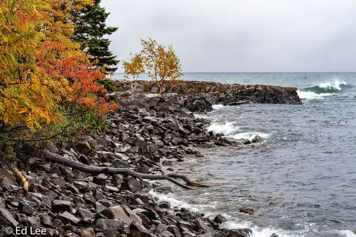 Two Harbors in the rain Lake Superior Fall Colors Minnesota Nature Minnesota Nature_collection Streamzoofamily Landscape_Collection Malephotographerofthemonth Water Sea Sky Beauty In Nature Tranquility Scenics - Nature Tree Nature Cloud - Sky Non-urban Scene Outdoors