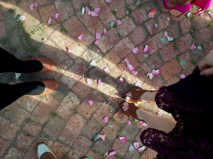 Weddings. High