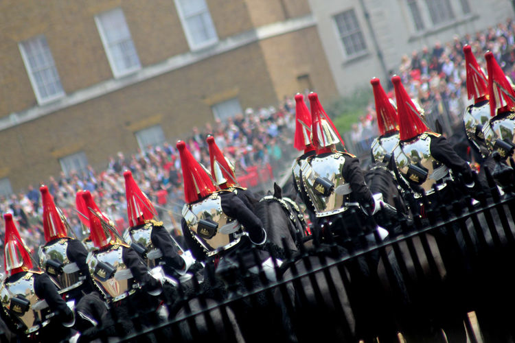Trooping of The colour London England Animal Themes Animal Wildlife Animals In The Wild Architecture Bird Building Exterior Close-up Day England Horseguards Horseguardsparade Hourseguards Parade Household Cavalry Large Group Of Animals London No People Outdoors Perching Red Tourism