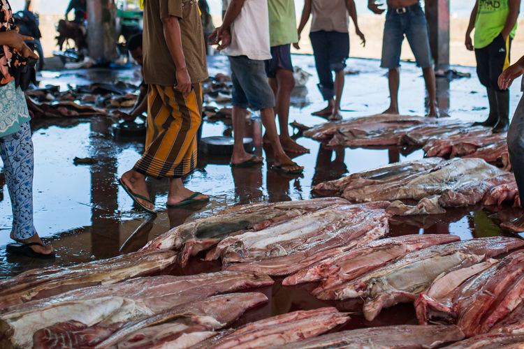 Low section of people standing by fish at market