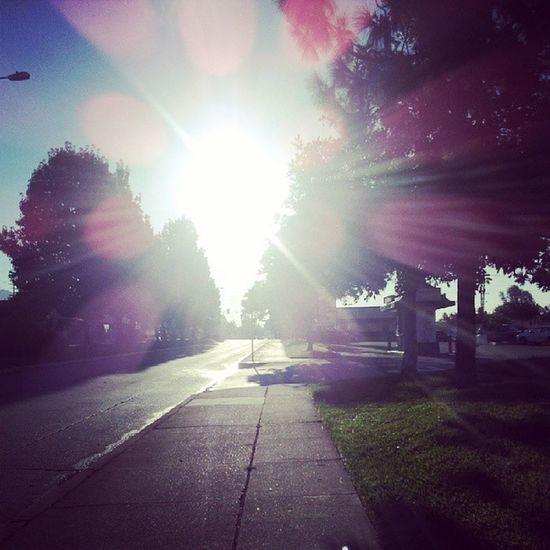 Great sunny day! Monrovia Sunny SaturdayClass