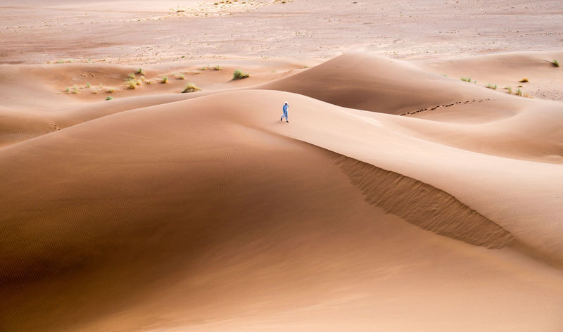 Lonely Morocco Thirst Adventure Animal Themes Arid Climate Beauty In Nature Day Desert Extreme Terrain Full Length Landscape Mammal Nature One Person Outdoors People Real People Sahara Sand Sand Dune Scenics Sky Travel Destinations