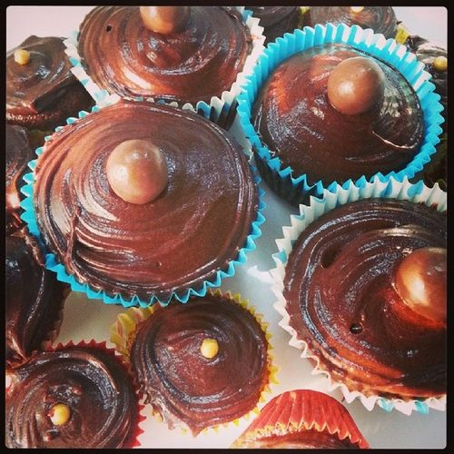 Sam's wife hits another home run. Chocolate cupcakes with malteses on top for the office. Samswiferox Looklikelittlebrownboobies Sharmeenweloveyou
