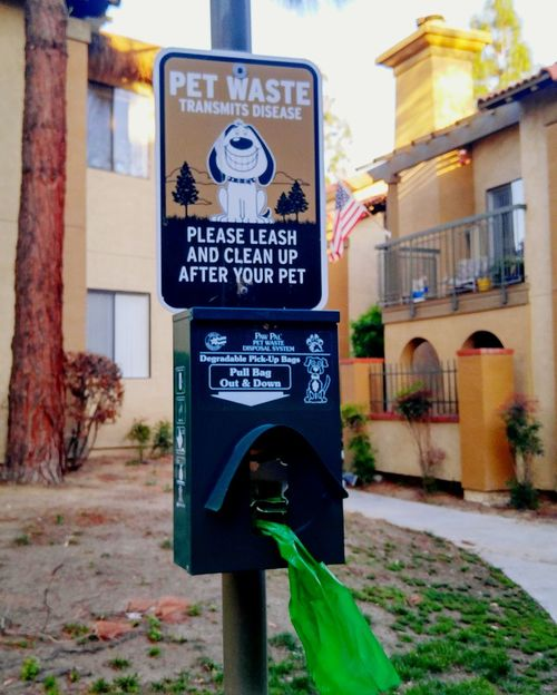 Pets Keep Clean Doggy Haven Doglover Necessary Cleanupthemess