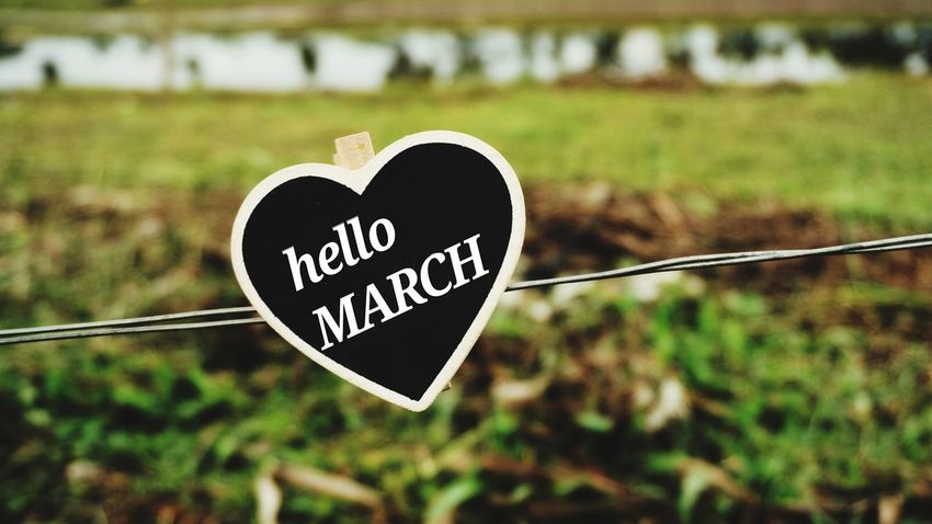 hello March Message Greetings Love Shape Love Words Concept Months Outdoors Alphabet Green Lake Board ABC Wire Metal Hello March Greetings Rural View Lake Heart Shape Love Text Message Valentine's Day - Holiday Communication Romance