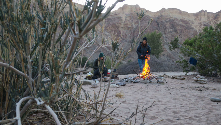 Two female hikers enjoying campfire Adventure Beach Bonfire Burning Bush Campfire Camping Evening Flame Let's Go. Together. Mountain Mountain Range Mountains Namibia Nature Outdoor Photography Outdoors Sand Tree Two People Wilderness Women