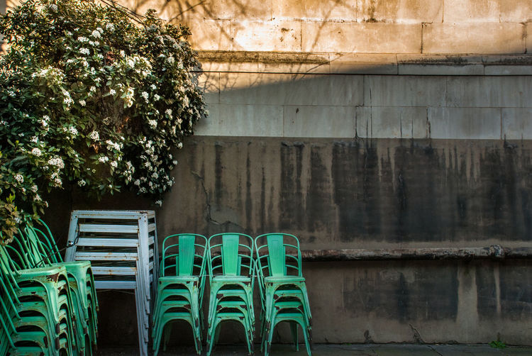 Empty chairs and plants against wall