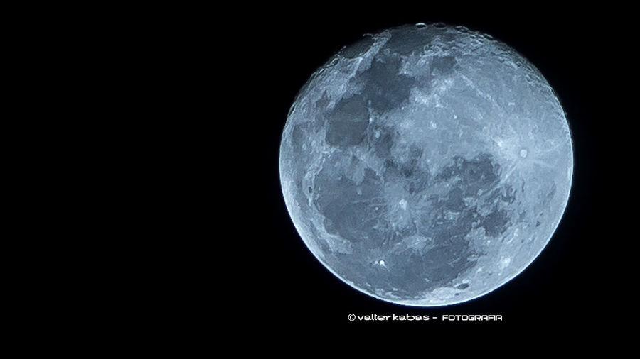 Mr Moon Moon