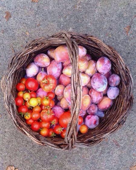 Fruit Vegetables Colorful Red Violet Basket Mypic Phrobisantos Loveit Summer